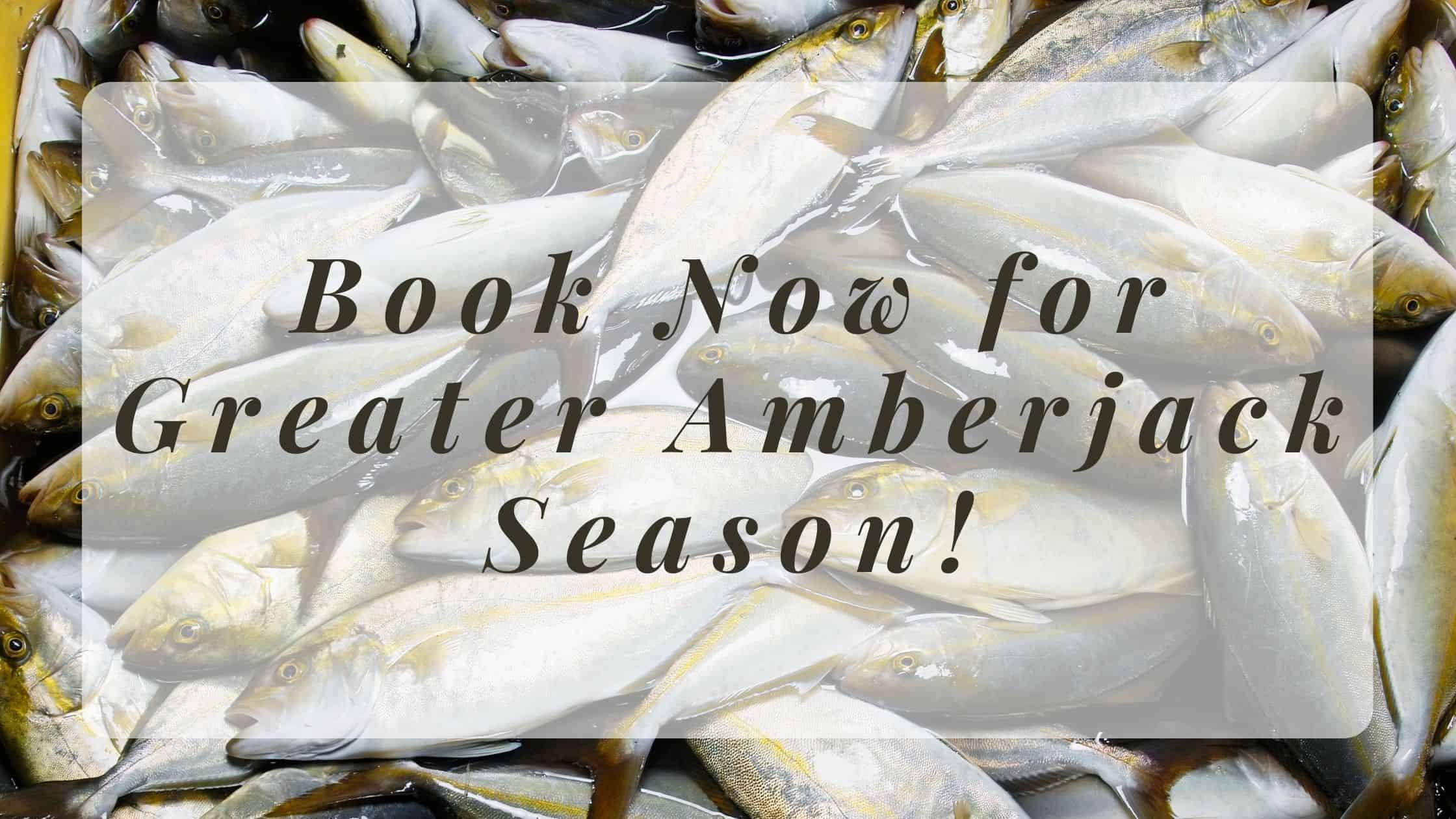 """Featured image for """"Book Now for Greater Amberjack Season!"""""""
